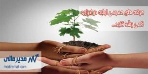 عرضه های اولیه عمومی در ایران
